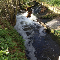 Pix Brook Restoration